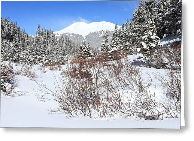 Summit County Colorado Greeting Cards - Jacque Peak Greeting Card by Eric Glaser