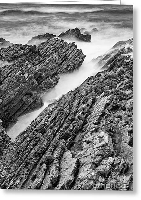 Montana De Oro Greeting Cards - Jagged - Montana de Oro State Park in California in Black and White Greeting Card by Jamie Pham