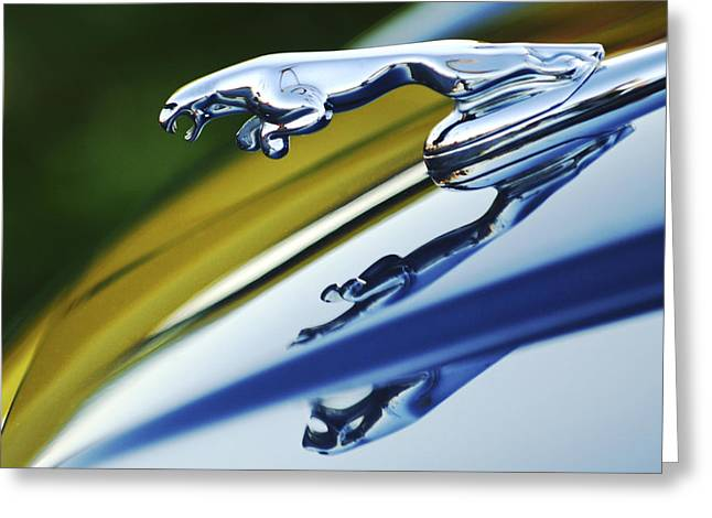 Vintage Hood Ornaments Greeting Cards - Jaguar Car Hood Ornament Greeting Card by Jill Reger