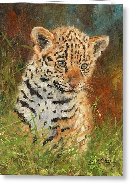 Jaguar Art Greeting Cards - Jaguar Cub Greeting Card by David Stribbling