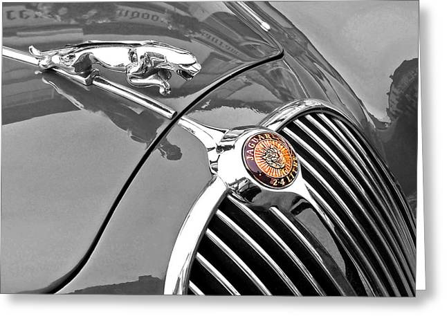 Collector Hood Ornament Greeting Cards - Jaguar Hood Ornament 1960 Greeting Card by Gill Billington