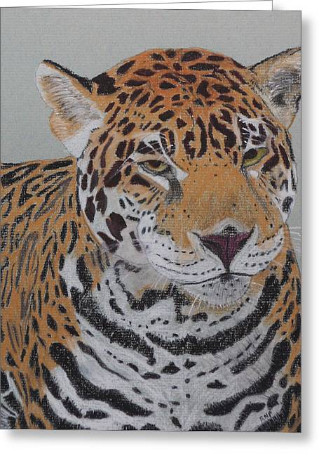 Jaguars Pastels Greeting Cards - Jaguar Greeting Card by Raymond Farrimond