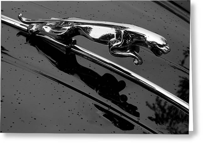 Car Hood Ornament Photographs Greeting Cards - Jaguar XK 150 hood ornament Greeting Card by Jim Hughes