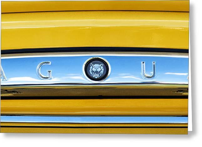 Car Mascot Greeting Cards - Jaguar XK8 Panoramic Greeting Card by Tim Gainey