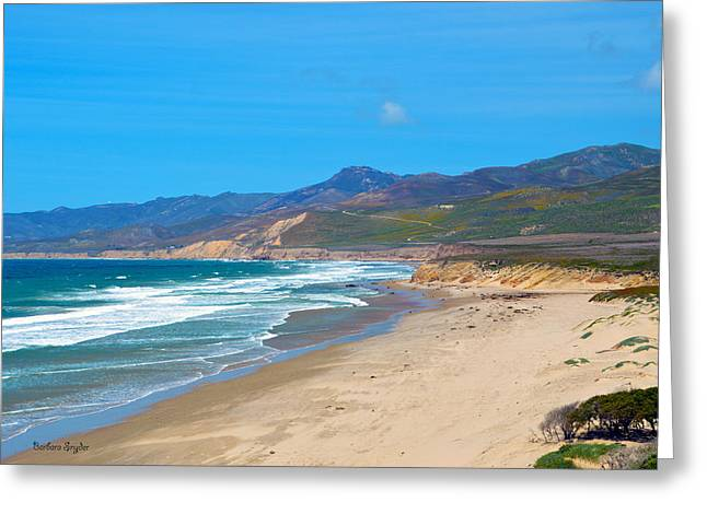 California Beach Art Digital Art Greeting Cards - Jalama Beach Santa Barbara County California Greeting Card by Barbara Snyder