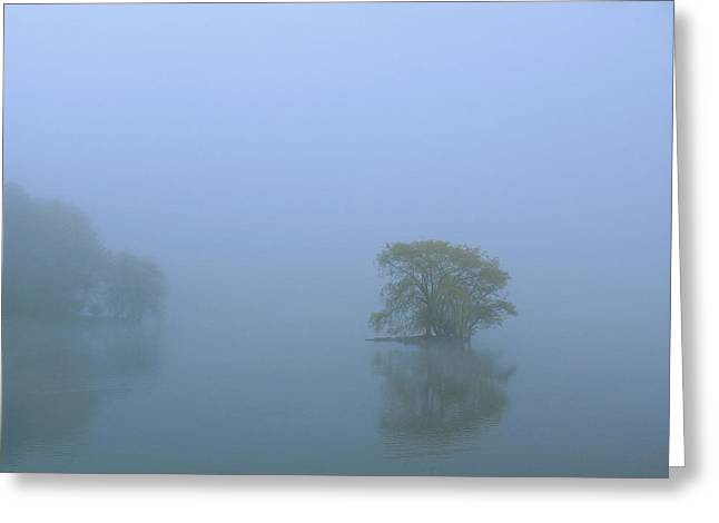 Willow Lake Greeting Cards - Jamaica Pond Greeting Card by Juergen Roth