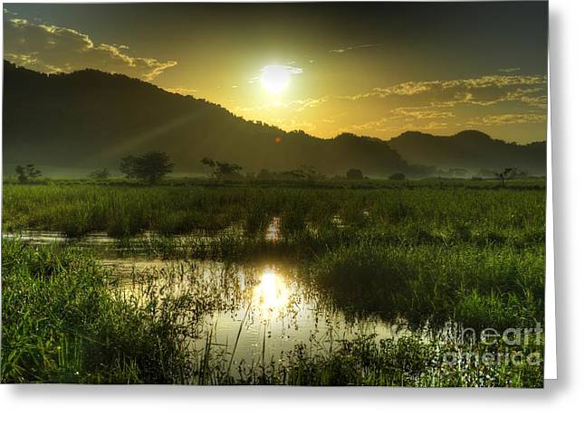 Jamaican Sunset Greeting Cards - Jamaican Sunrise 2 Greeting Card by William Teed