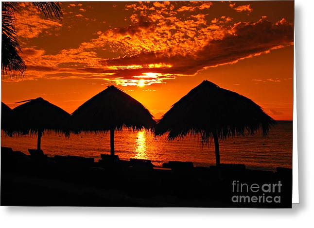 Jamaican Sunset Greeting Cards - Jamaican Sunset Greeting Card by Addie Hocynec