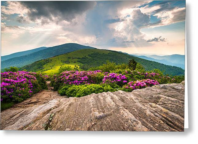North Carolina Blue Ridge Mountains Landscape Jane Bald Appalachian Trail Greeting Card by Dave Allen