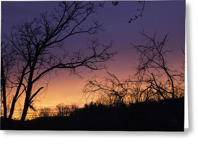 Nature Scene Greeting Cards - January 2015 Sunrise Greeting Card by Teresa Mucha