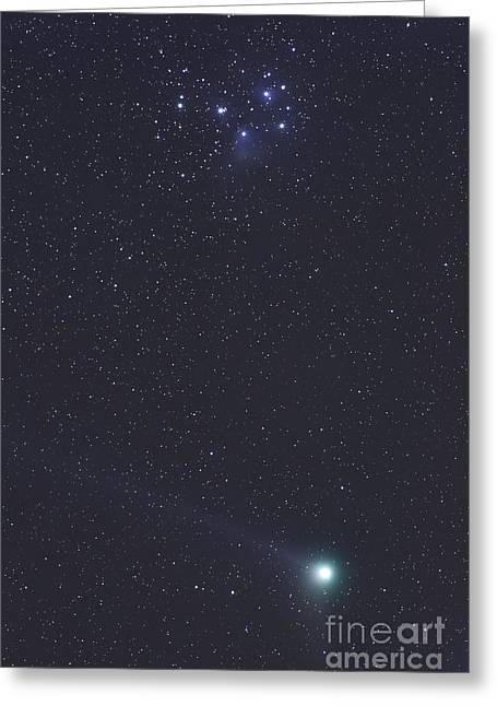 January 6, 2005 - Comet Machholz Greeting Card by Alan Dyer