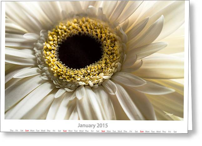 Monthly Calendars Greeting Cards - January Calendar Sheet Greeting Card by Alejandro Reyna