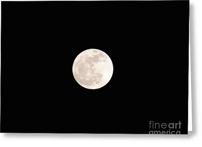 Moonlit Night Greeting Cards - January Full Moon Greeting Card by Jai Johnson