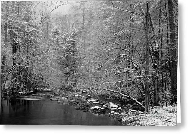 River Scenes Greeting Cards - January Gift Greeting Card by Michael Eingle