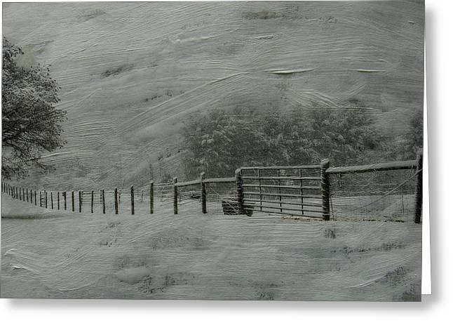Fence Row Greeting Cards - January Storm Greeting Card by Kathy Jennings