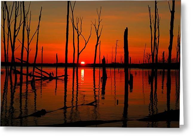 Raymond Salani Iii Greeting Cards - January Sunrise Greeting Card by Raymond Salani III