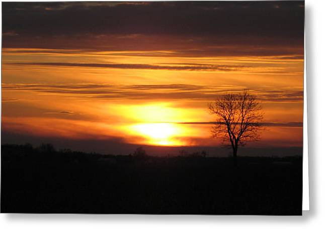 Rural Indiana Greeting Cards - January sunset Greeting Card by Dan McCafferty