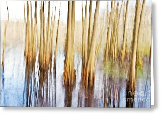 Swamp People Greeting Cards - Januarys Painting in the Swamp Greeting Card by Scott Pellegrin