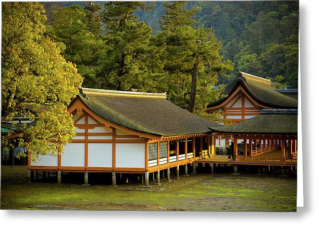 Shinto Greeting Cards - Japan Itsukushima Greeting Card by Sebastian Musial