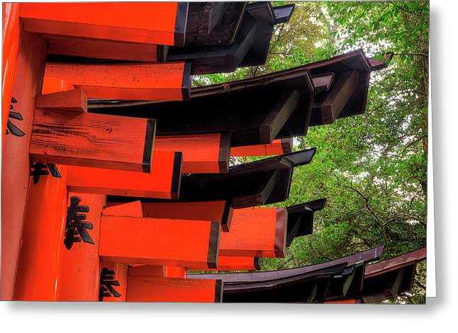 Japan, Kyoto View Of Torii Gates Greeting Card by Jaynes Gallery