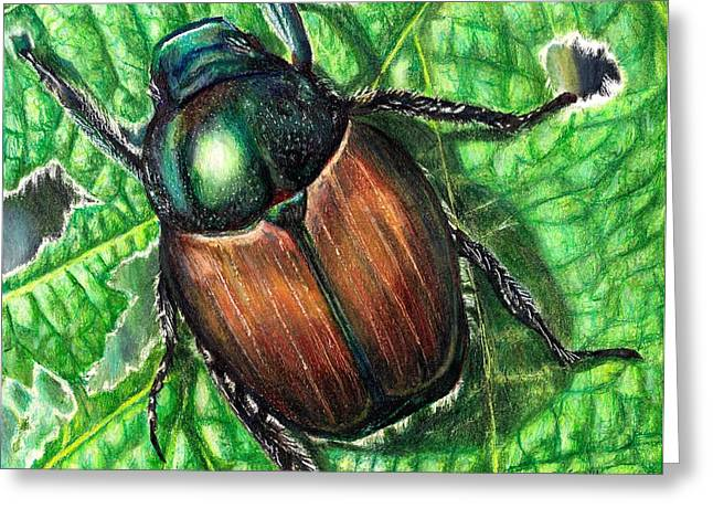 Shiny Drawings Greeting Cards - Japanese Beetle Greeting Card by Shana Rowe