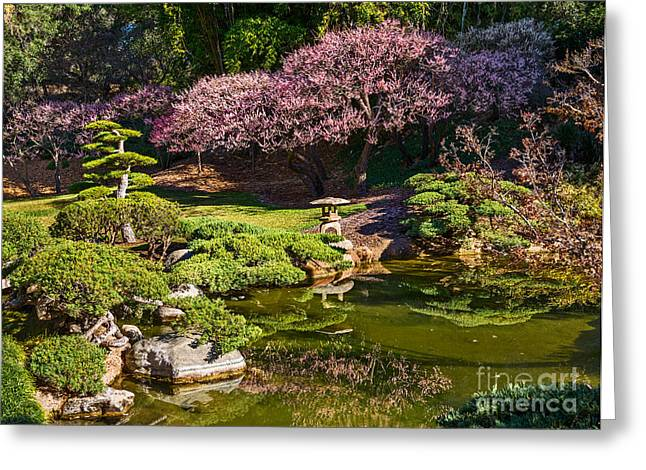 Japanese Garden Blossom Greeting Card by Jamie Pham