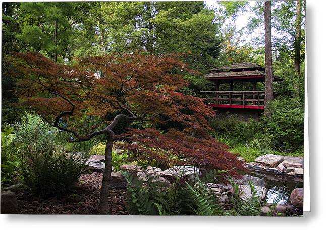 Landscape Posters Greeting Cards - Japanese maple and pagota Greeting Card by Chris Flees