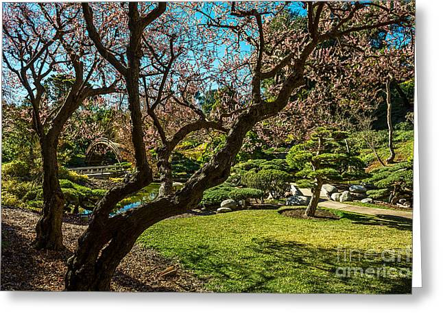 Japanese Spring Garden Greeting Card by Jamie Pham
