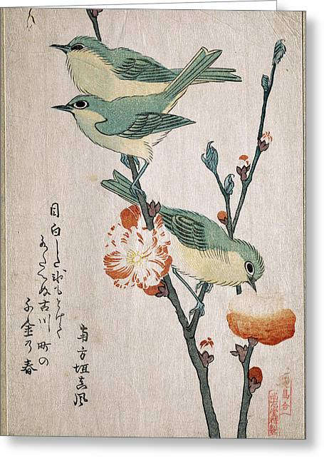 Peaches On A Tree Greeting Cards - Japanese White-eyes Perching on a Branch of Peach Tree Greeting Card by Kubo Shunman
