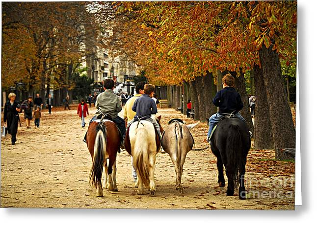 Row Greeting Cards - Jardins du Luxembourg Greeting Card by Elena Elisseeva
