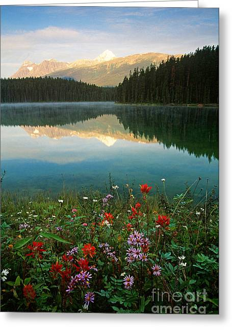 Alberta Landscape Greeting Cards - Jasper National Park, Canada Greeting Card by Art Wolfe