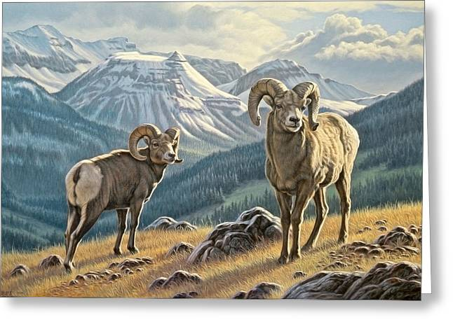 Bighorn Greeting Cards - Jasper Rams Greeting Card by Paul Krapf
