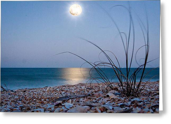 Sea Moon Full Moon Greeting Cards - Jax Beach Greeting Card by Jim Finch