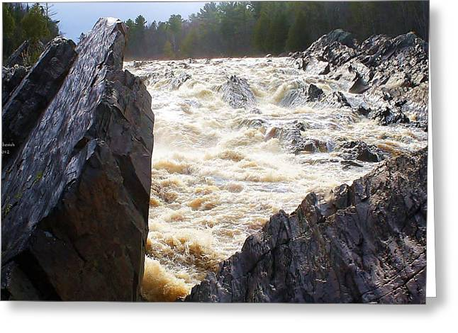 Agate Beach Greeting Cards - Jay Cooke Greeting Card by Paul Berish