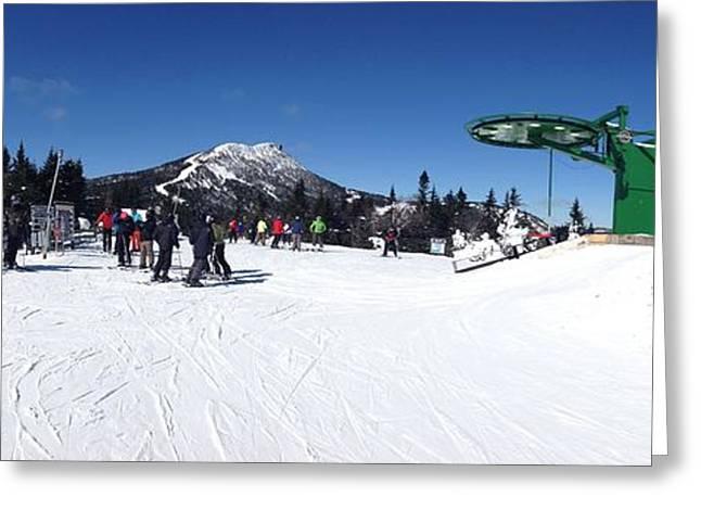 Bird Summit Greeting Cards - Jay Peak Summit Greeting Card by Michael French