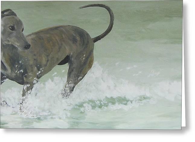 Greyhound Dog Greeting Cards - Jazz at the beach Greeting Card by Susan Richardson