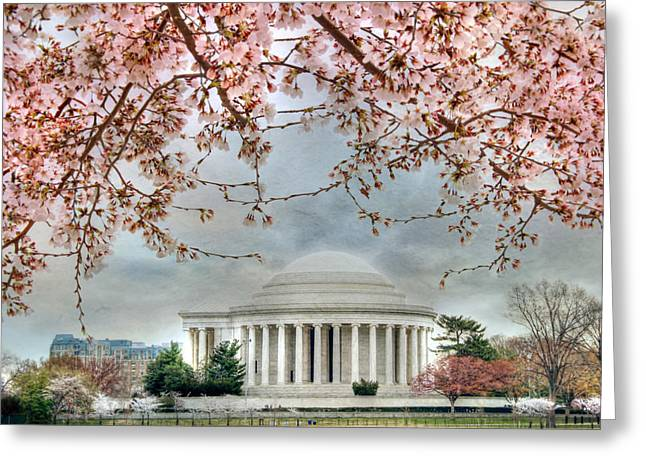 Beautiful Flowering Trees Greeting Cards - Jefferson Blossoms Greeting Card by Lori Deiter