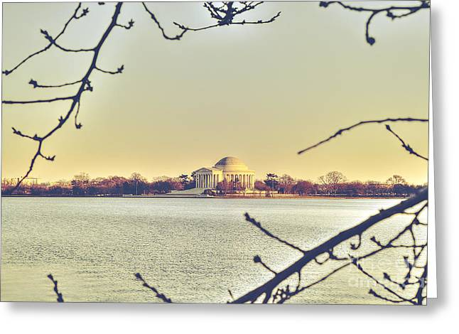Us Capital Greeting Cards - Jefferson Memorial at Dusk Greeting Card by Emily Enz