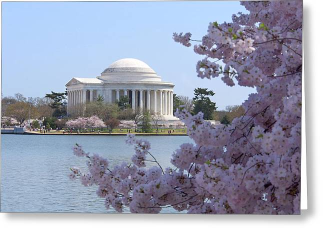 Jefferson Memorial Greeting Cards - Jefferson Memorial - Cherry Blossoms Greeting Card by Mike McGlothlen