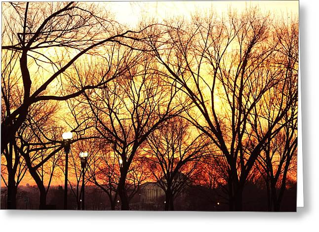 Jefferson Memorial - Washington DC - 01135 Greeting Card by DC Photographer