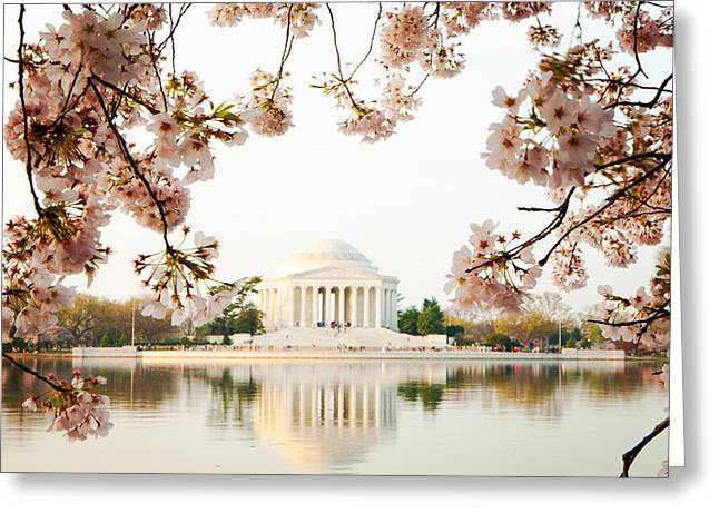 Jefferson Memorial Greeting Cards - Jefferson Memorial With Reflection and Cherry Blossoms Greeting Card by Susan  Schmitz
