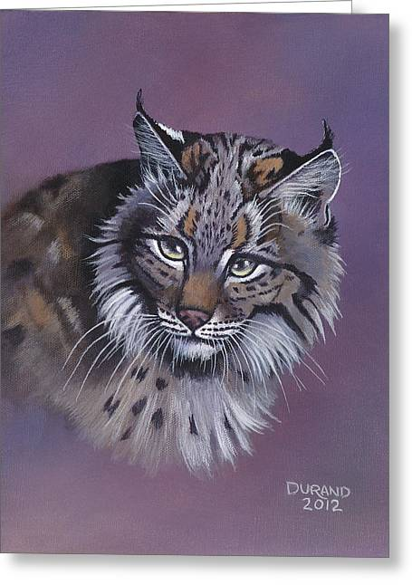 Bobcats Greeting Cards - Jeffery Greeting Card by John Durand