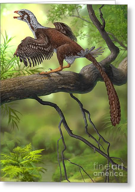 Existence Greeting Cards - Jeholornis Prima Perched On A Tree Greeting Card by Sergey Krasovskiy