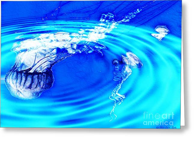 Jellyfish Pool Greeting Card by Methune Hively