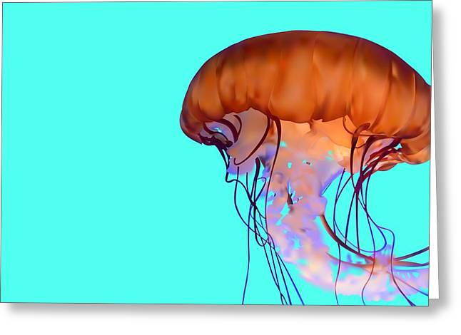 Drifter Digital Art Greeting Cards - Jellyfish Greeting Card by Tanias Reign