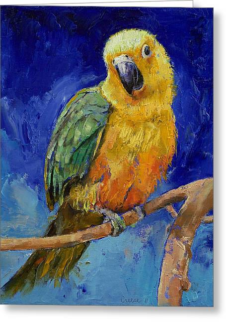 Jenday Conure Greeting Card by Michael Creese