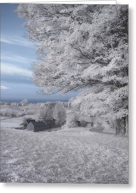 Snow Tree Prints Greeting Cards - Jenne Farm Vermont in Infrared Greeting Card by Joann Vitali