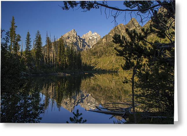 Jenny Lake Greeting Card by Michael J Bauer