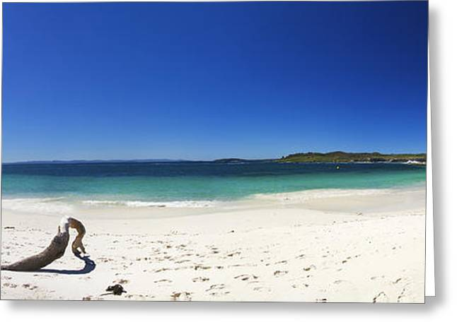 White Pyrography Greeting Cards - Jervis Bay Greeting Card by Nathan Waddell