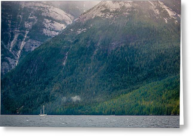 Jervis Greeting Cards - Jervis Inlet BC Greeting Card by Mike Penney